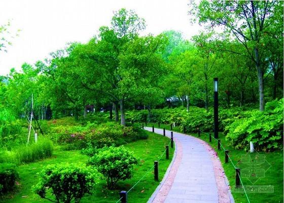 [福建]园林绿化工程消耗量定额(2005版)