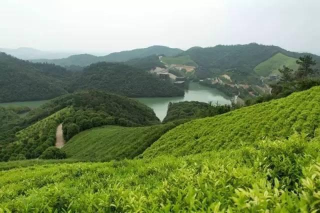 中国最受欢迎的35家顶级野奢酒店_72