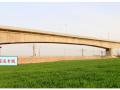 [中建]防护棚架法跨既有铁路京广线连续梁(60+100+60m)施工组织设计(149页,附图丰富)