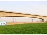 【中建】防护棚架法跨既有铁路京广线连续梁(60+100+60m)施工组织设计(149页,附图丰富)