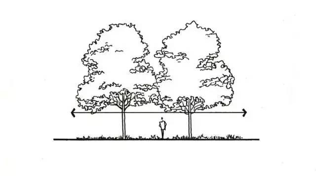 最全植物设计总则·干货_6