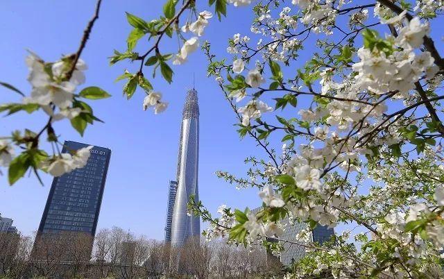 全国唯一!中建八局这个项目捧回中国钢结构金奖杰出工程大奖!