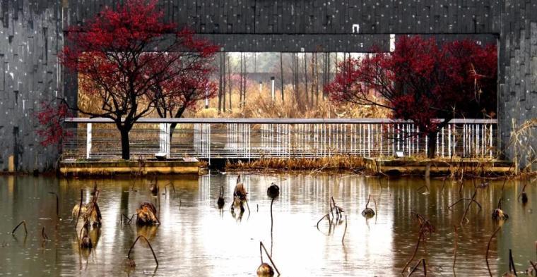 金华梅展示园景观-5