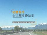 公路设计从入门到精通实操(纬地/DPX)