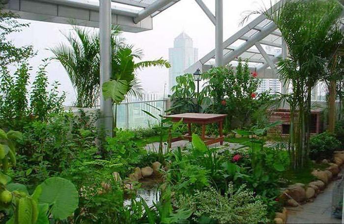屋顶上的园林——屋顶花园景观设计及施工_3