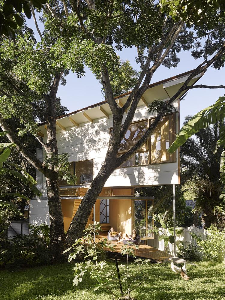 澳大利亚Taringa树屋