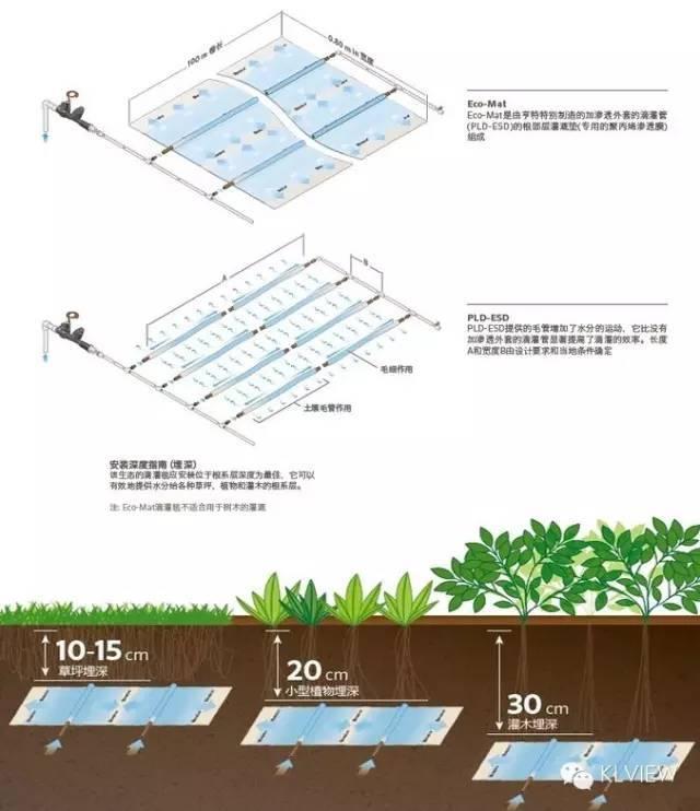 屋顶花园设计规范及植物配置 !