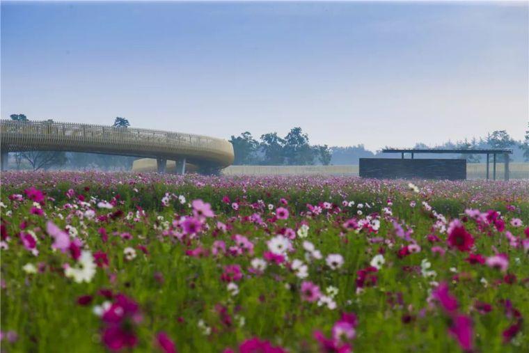 中国建筑设计奖公布,八大景观项目获得中国建筑界最高荣誉!_13