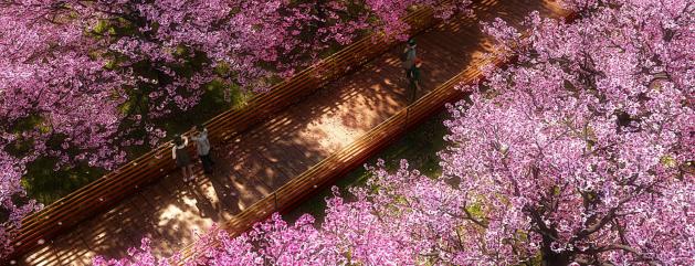 """[湖北]""""海绵城市""""花溪景观公共休闲绿地景观规划设计方案_1"""