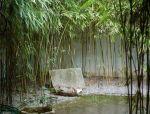 竹 · 院