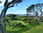 景观设计|花园草坪的种植经验大总结,不看会后悔哦!