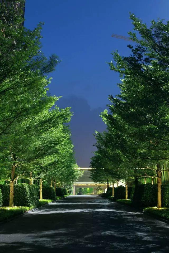 60个示范区景观设计合辑