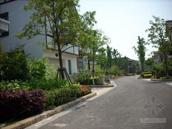 小区道路工程施工方案(含排水 化粪池工程)