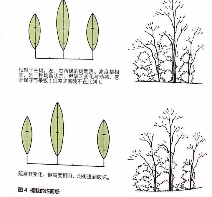别墅庭院设计中植物种植的基本思路