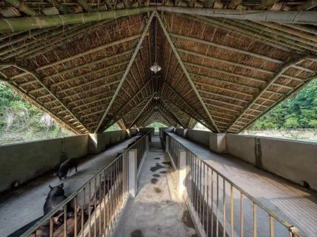 25个农村改造案例,这样的设计正能量爆棚_29