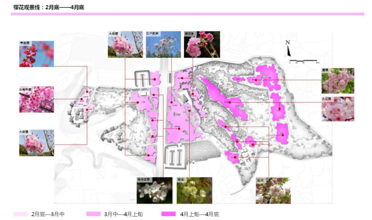 [河南]樱花主题旅游度假风景区规划设计方案