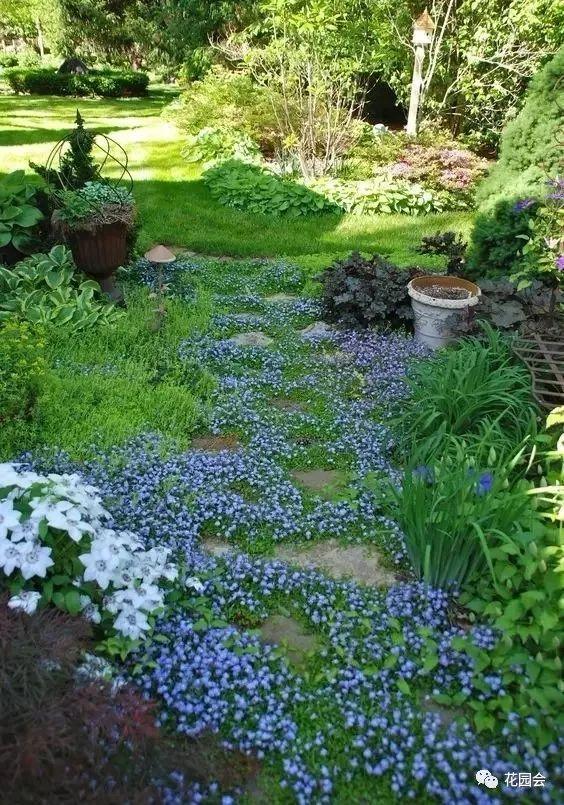 花草与石板的关系•花园小径_11