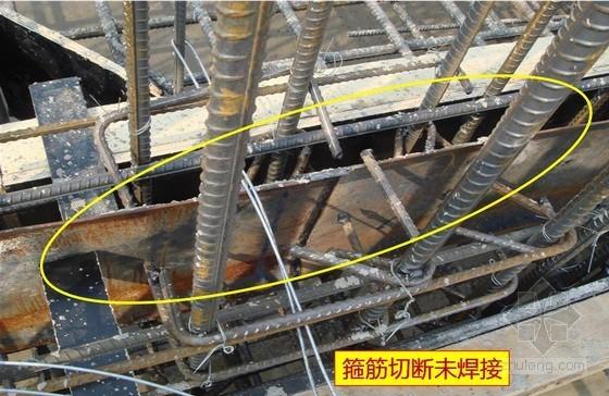 建筑工程结构、装饰、安装施工质量检查汇报(249页,丰富图片)