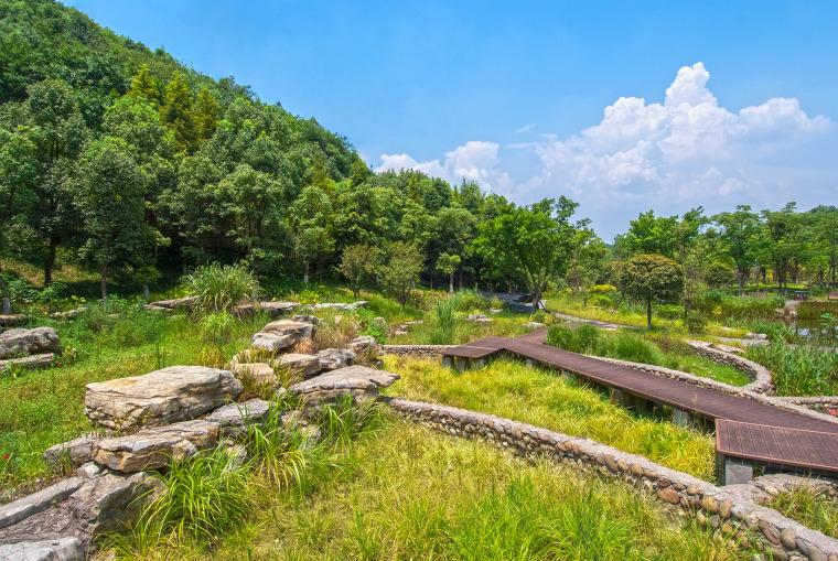 重庆园博园江南湿地公园