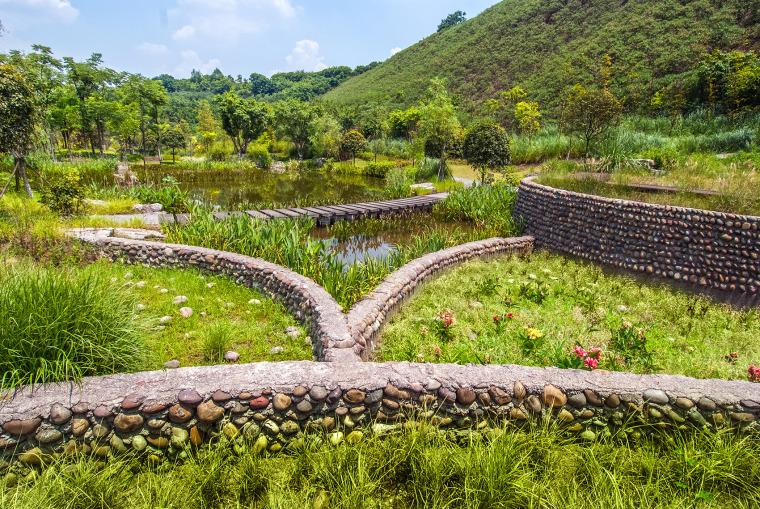重庆园博园江南湿地公园-3