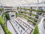 山东滨州北海社会政务中心绿化提升设计