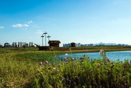 农业景观|观光农业园景观应该这么做