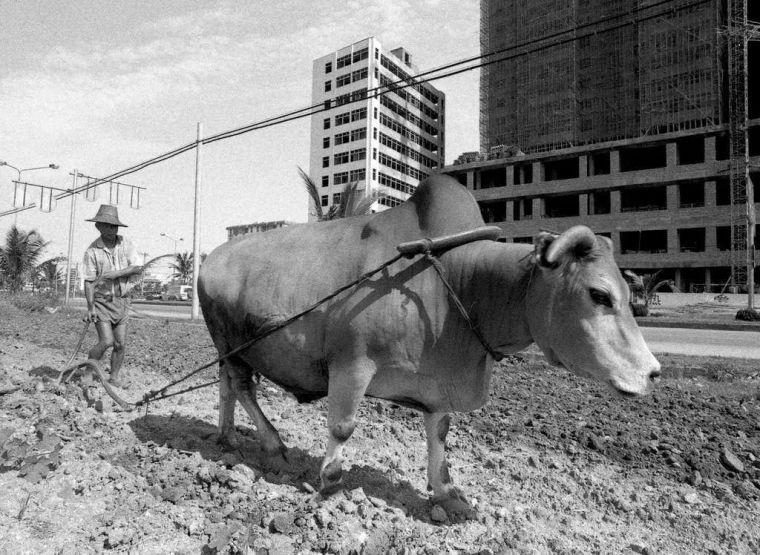 回顾历史:30年前海南房地产的兴起与破灭_8