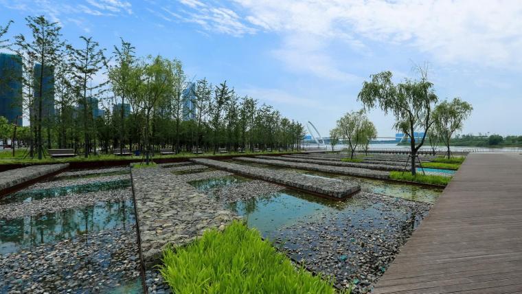 南京国际青年文化公园-2