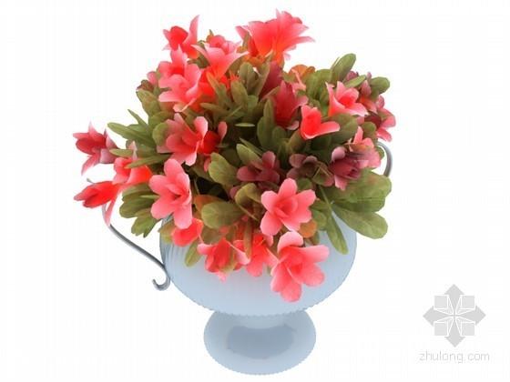 花卉盆栽3D模型下载