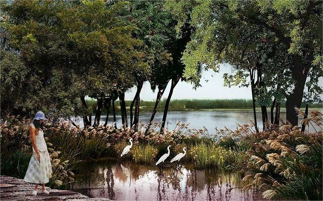 湿地公园景观设计要点_8