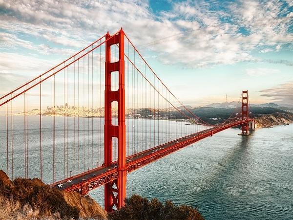 桥梁毕设答辩250m连续刚构桥设计