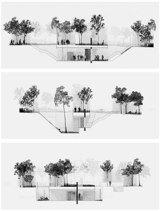 怎样把树种出艺术范?_5