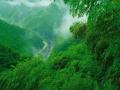 在安吉竹林深处的古朴村落里,拥泉而居,枕山而眠