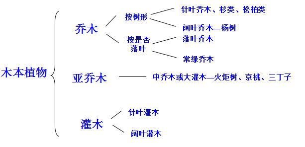 工程造价培训材料(土建专业-绿化工程)_1