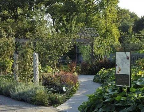专题:成就田园生活的食材花园,你会设计吗