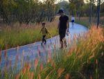 亲子农业丨植物景观营造的五个要点