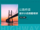 公路桥梁设计小白技能培训(高工讲授)