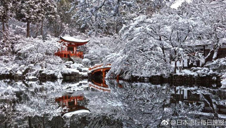 雪景大合集,看看你最喜欢哪里?_28