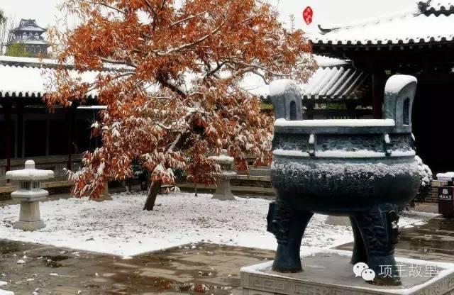 最美不过初雪,宿迁的项王故里就变成了西楚古城_18