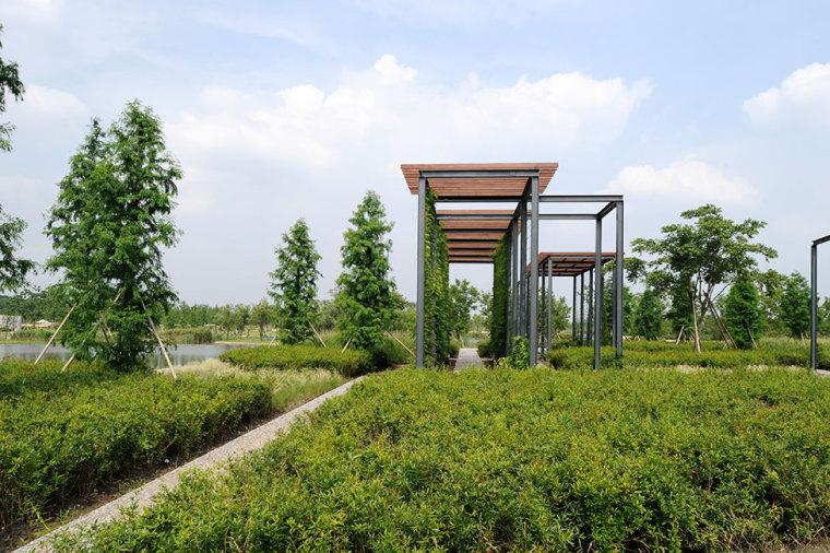 上海辰山植物园-5