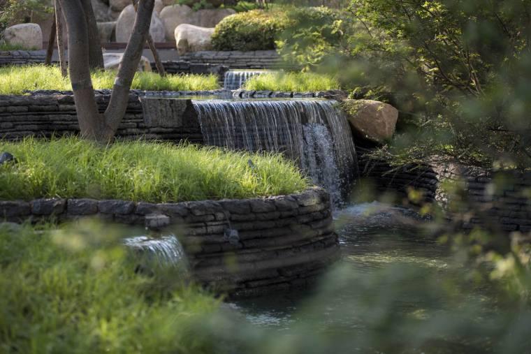 干货|居住区景观设计植物配置方法(附:南北方植物配置资料)_7
