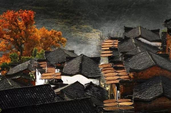 万漪景观分享-逐渐消失中的中国古建筑之美_37