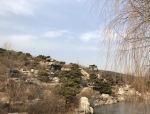 周日北京西山森林公园