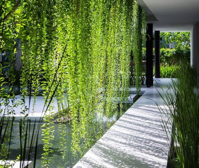 垂直绿化,我只佩服这样的设计!