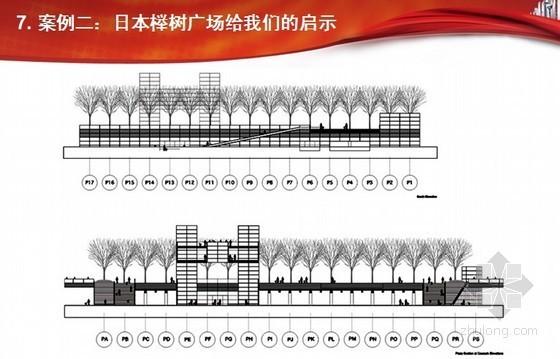 [知名房企]房地产景观设计 施工与养护(树相营造)