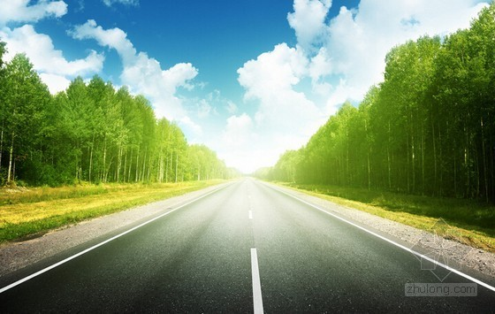 [山东]道路绿化提升工程预算书(附施工图纸)