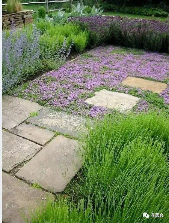 花草与石板的关系•花园小径_15