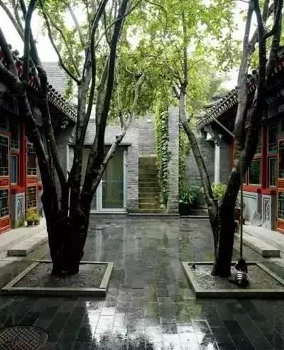 神仙的日子,杨丽萍的宅子,冯唐的院子~_2