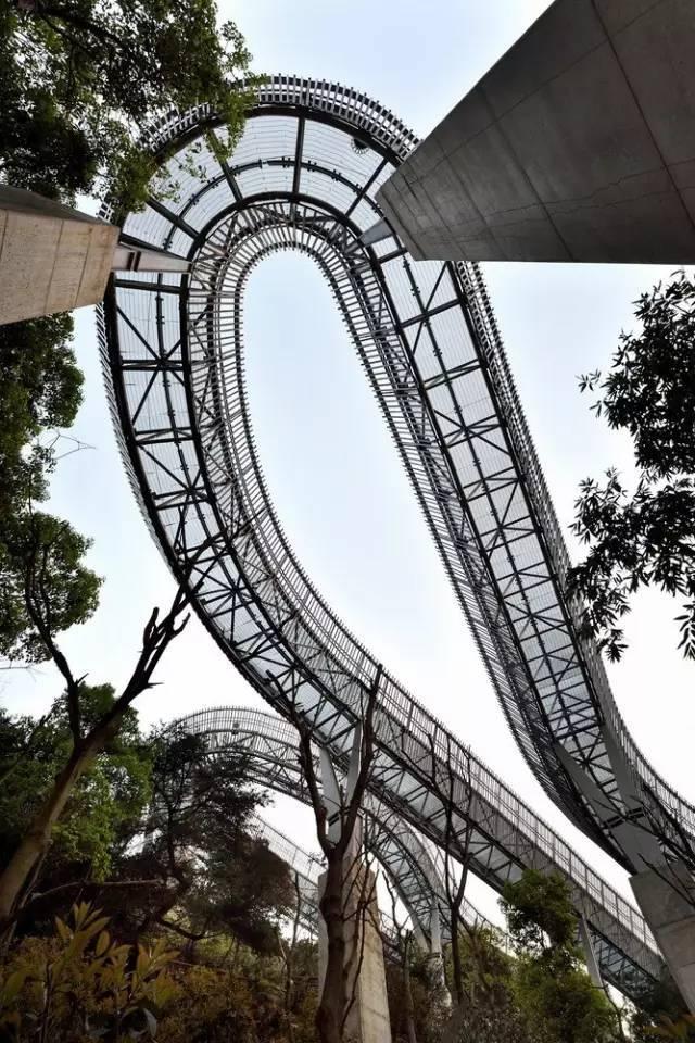 世界最长的城市森林步道在中国建成