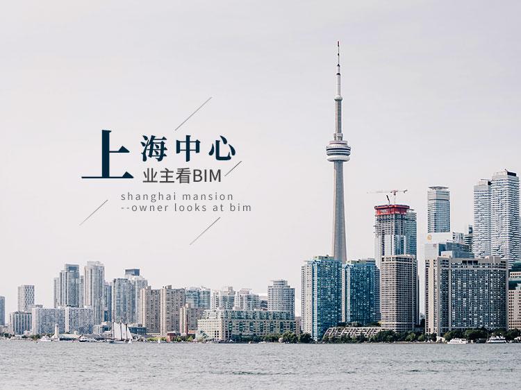 上海中心——业主看BIM